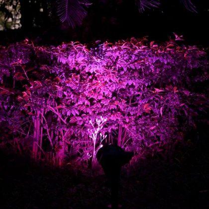 Bright Colour Changing 7 LED Solar Spot Light for Outdoor Garden Tree Landscape Decoration