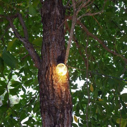 Advanced Solar Fairy Lights 10 Classic Durable LED Bulbs String Warm White