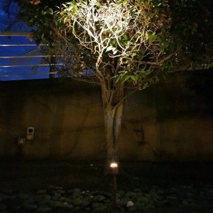 Solar Powered LED Spotlight 3W Outdoor Garden Landscape Decoration